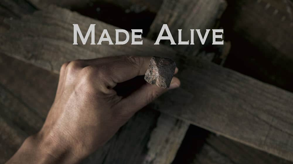 Made Alive Image